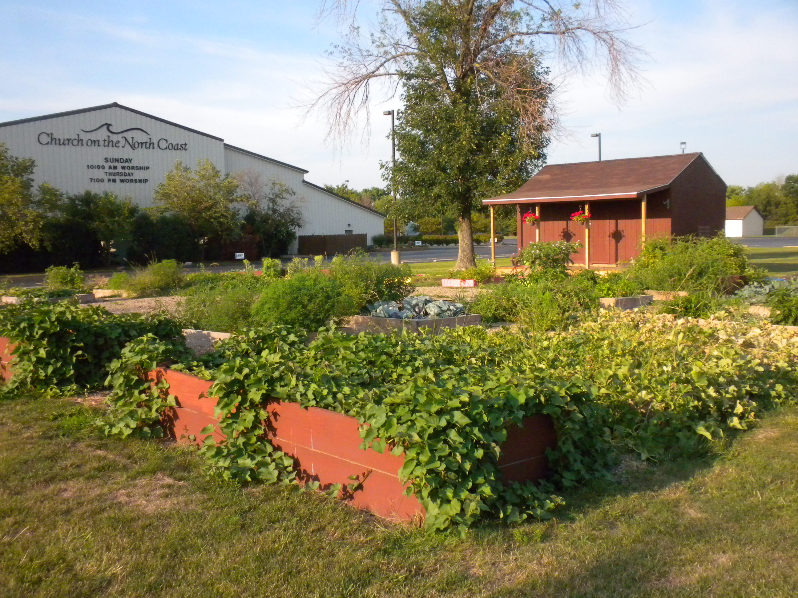 301 Moved Permanently: Unique Community Garden Ideas Photograph