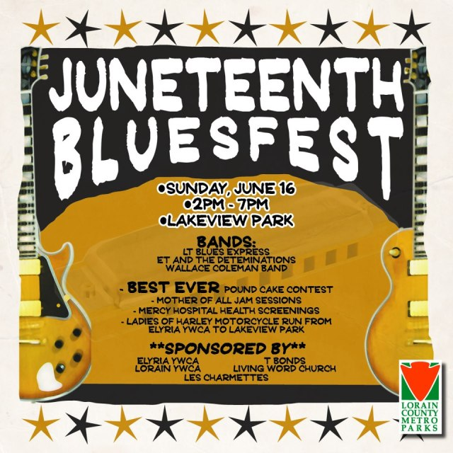 juneteenth bluesfest 061613