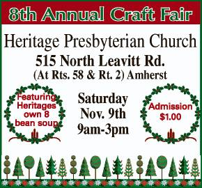 craft fair 110913