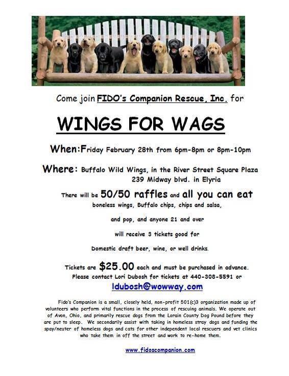 022814 wings for wags
