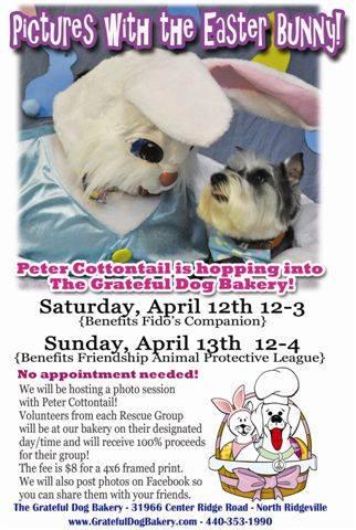 0412-1314 easter bunny at grateful dog