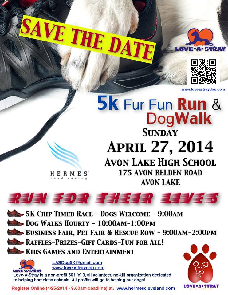 042714 LAS 5k run dogwalk