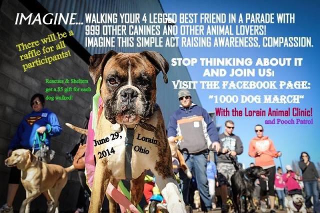 1000 dog march