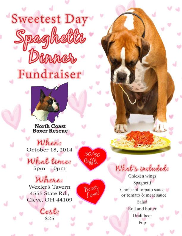 101814 north coast boxer rescue fundraiser