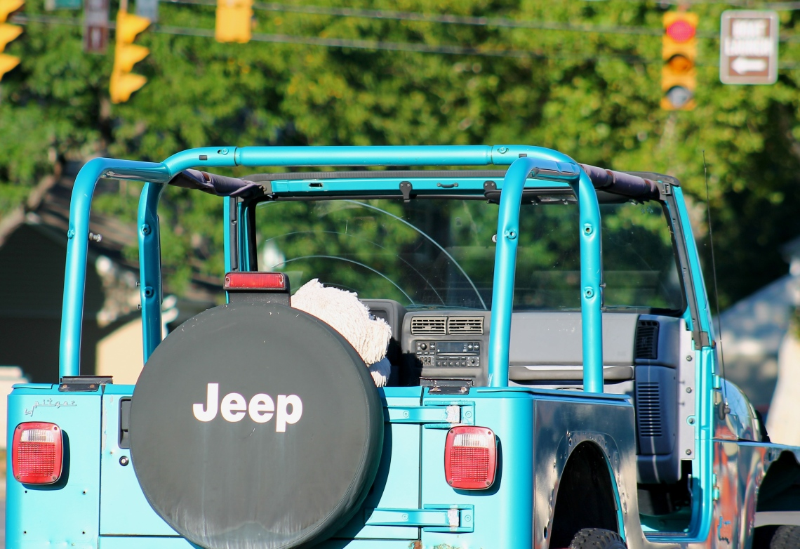 Broadway Brake and Tire Bear in a Jeep 01