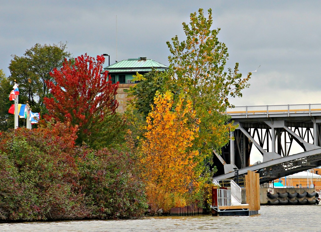 Black River Boat Tour fall foliage 101814-008