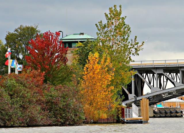 Black River Boat Tour fall foliage 101814-008