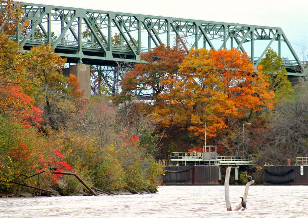 Black River Boat Tour fall foliage 101814-013