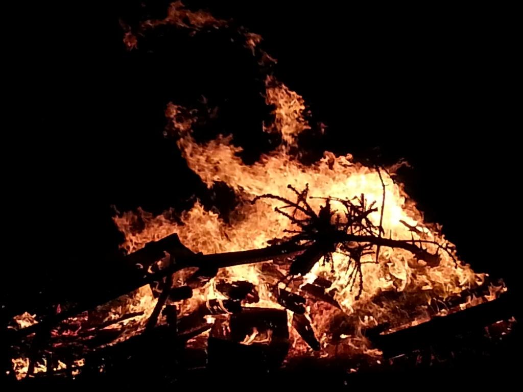 fire841