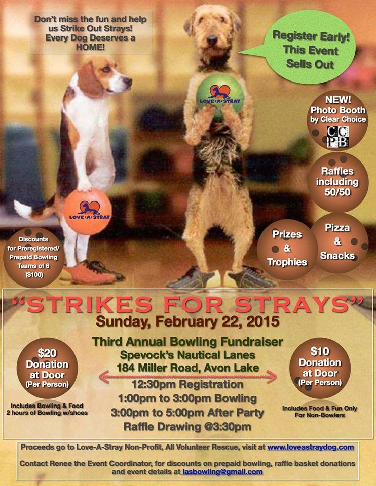 022215 strikes for strays