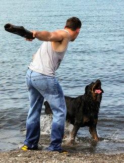 dog beach 072515-011