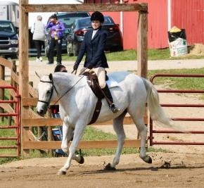 Horse Show 091017 10