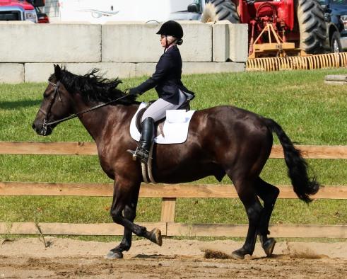 Horse Show 091017 11