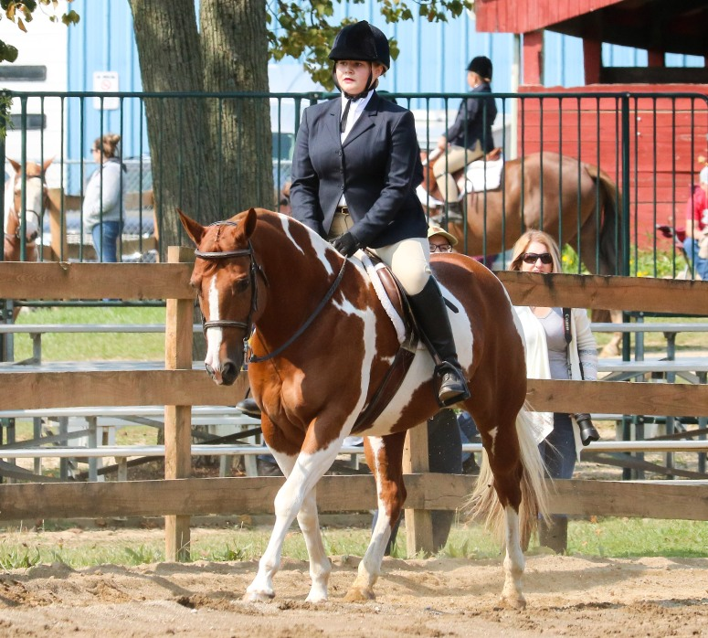 Horse Show 091017 12