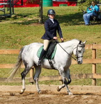 Horse Show 091017 13