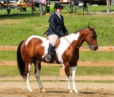Horse Show 091017 15