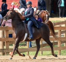 Horse Show 091017 17