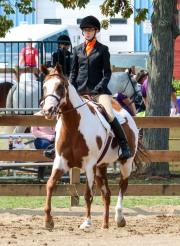 Horse Show 091017 23