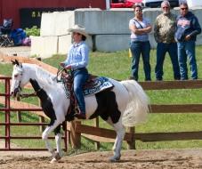 Horse Show 091017 29