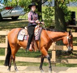 Horse Show 091017 32