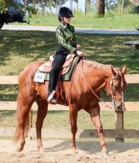 Horse Show 091017 33