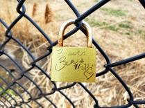 love locks 03